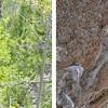 Five Reasons to Make a Bouldering Trip to Lander, Wyoming